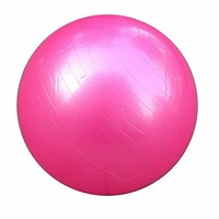 Mad Ally 60cm Exercise Ball